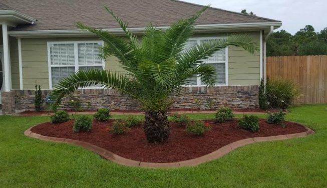 planting flower bed